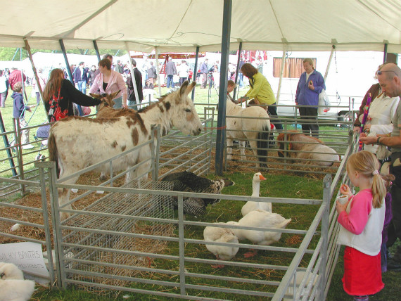 knebworth country show