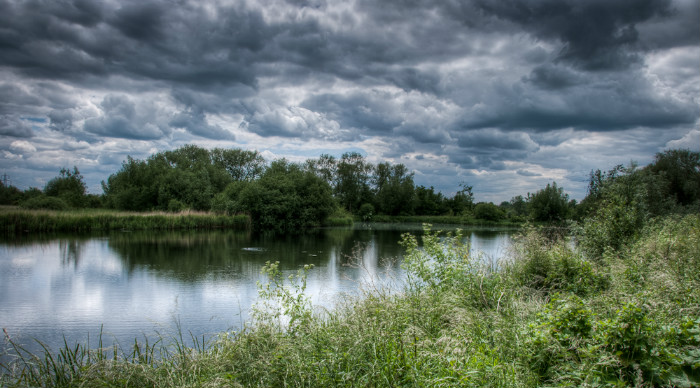 Rye_Meads_Nature_Reserve